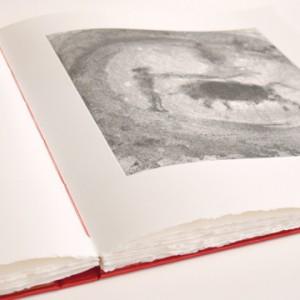 livre d'artiste Barcelo