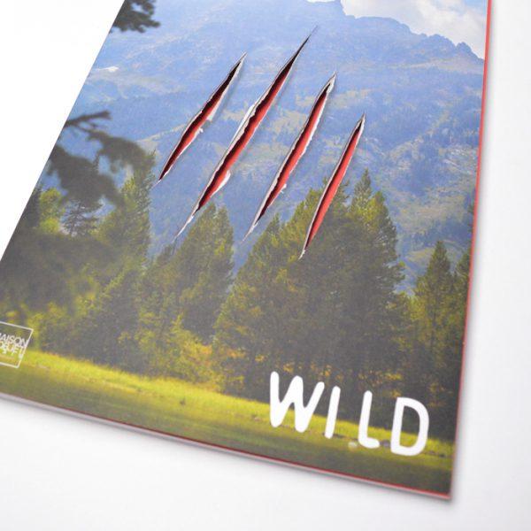 decoupe laser sur livre avec façonnage a la suisse